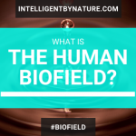 What is the Human Biofield?